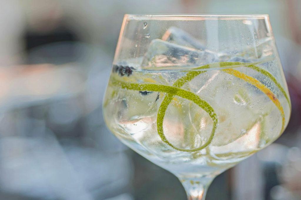 Como fazer o gin tônica perfeito