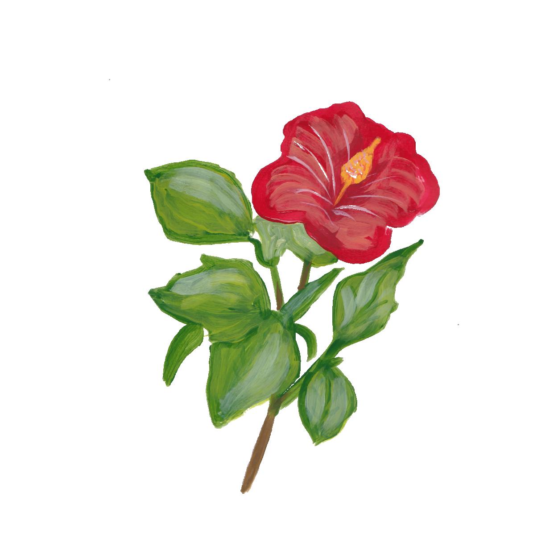 arapuru-botanicos-pintura_Prancheta 1 cópia 8