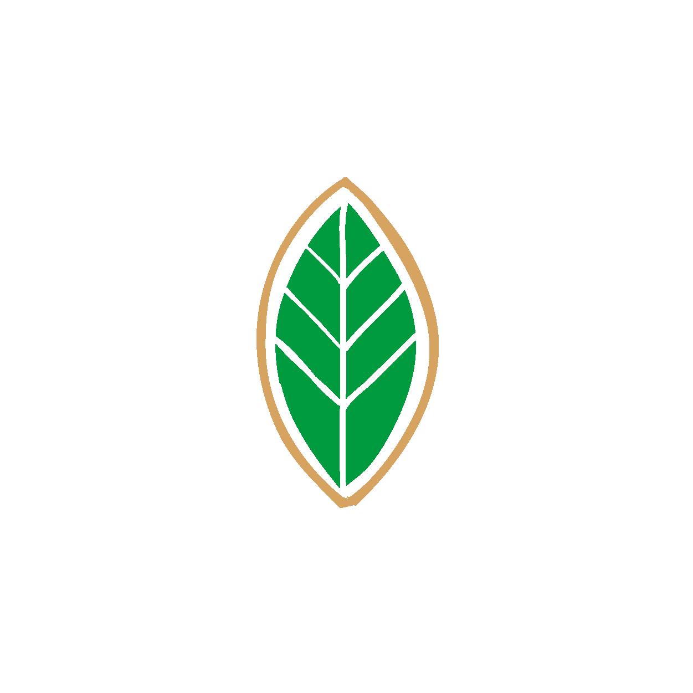 arapuru-botanicos-vetor_Prancheta 1 cópia 4