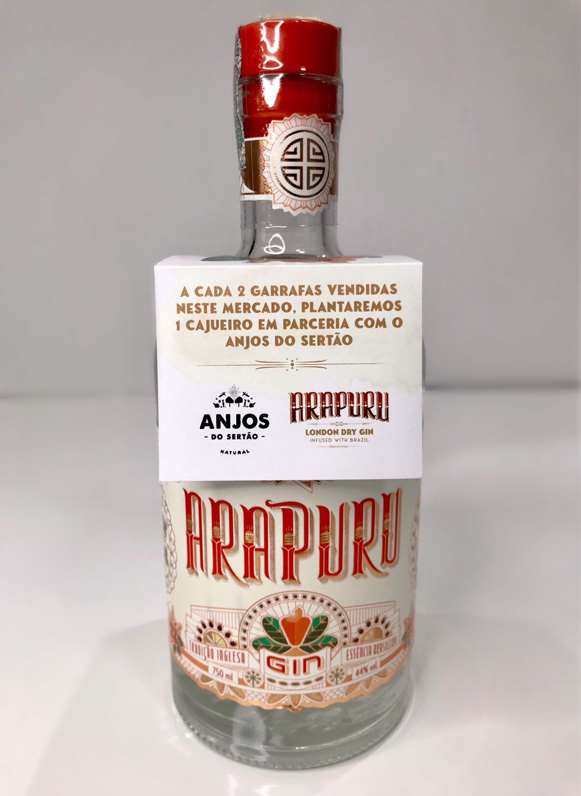arapuru-e-anjos-do-sertao